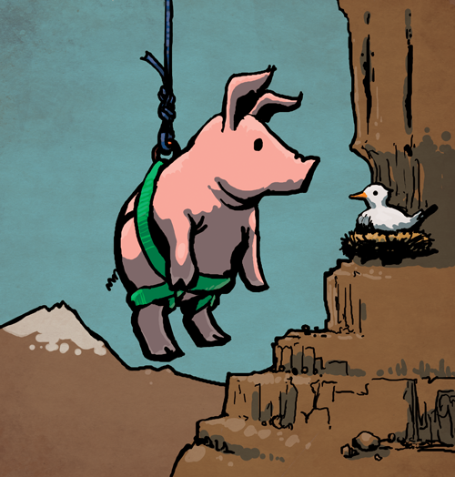Pig Up a Rope
